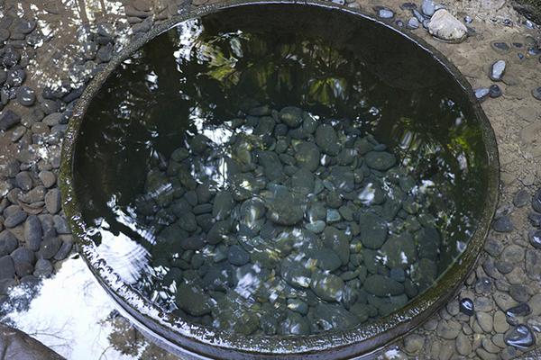 明治神宮はパワースポット?清正の井戸とお守りについて