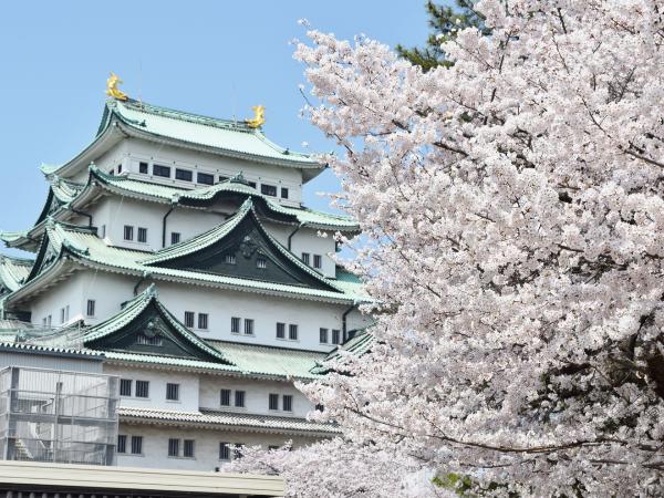 名古屋城の城主と本丸御殿。アクセス・駐車場など観光情報